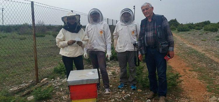 NATO SPS projekt pčele – aktivnosti na poligonu Benkovac